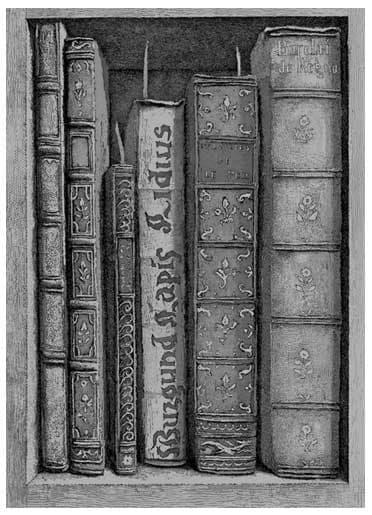 Érik Desmazières - Fragment de la bibliothèque de Sir T.B. (I)
