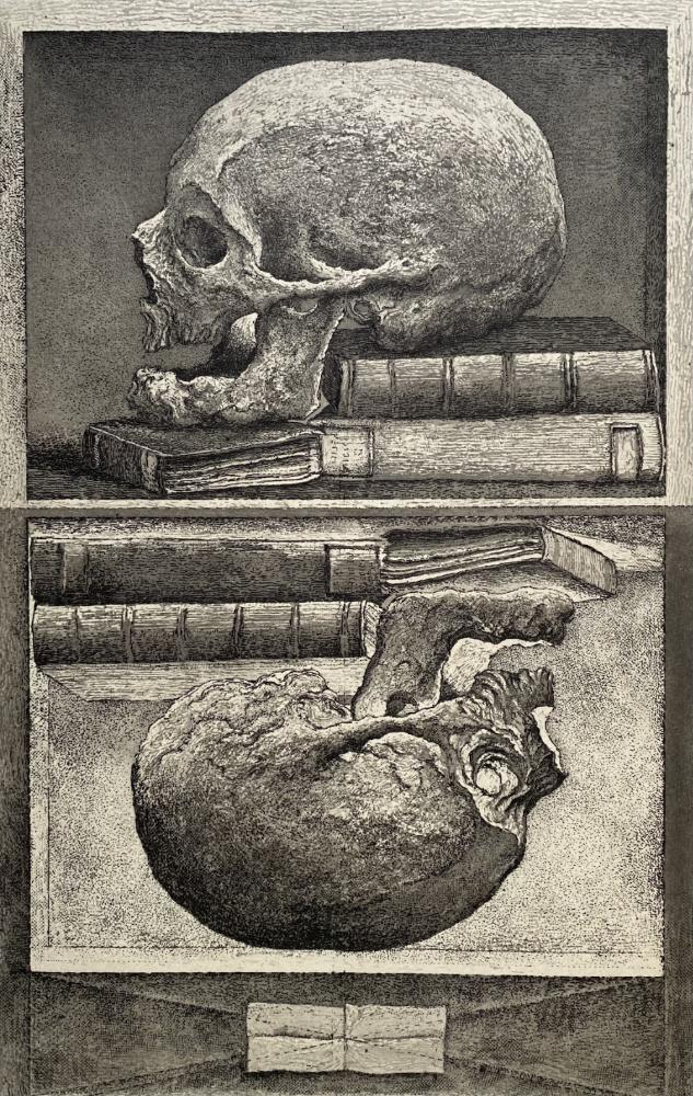Erik Desmaziere - The Skull of Sir Thomas Browne
