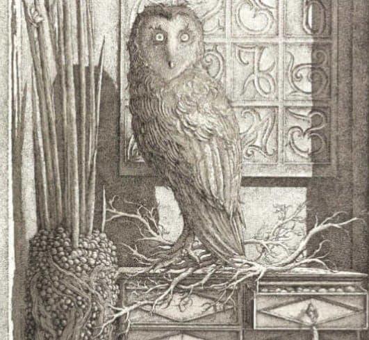 Érik Desmazières - Volume 5 Catalogue