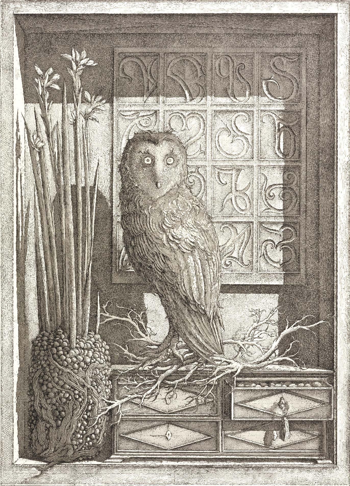 Érik Desmazières - L'Oiseau de Minerve